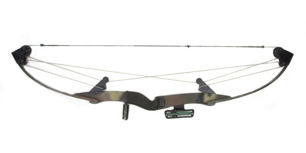 Compound_Bow_Adavanced